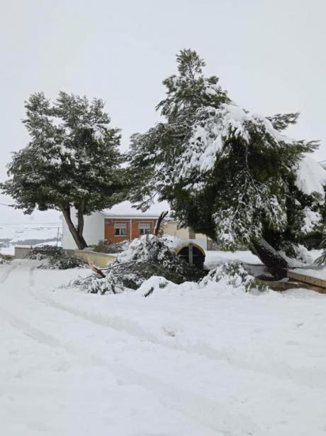 Tarancón cifra en 3 millones de euros los daños por la borrasca Filomena