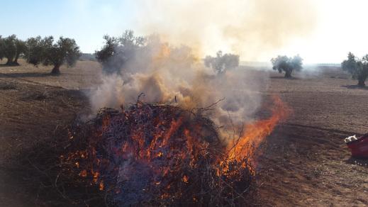 Prorrogada hasta el 15 octubre la prohibición para quemas de restos agrícolas