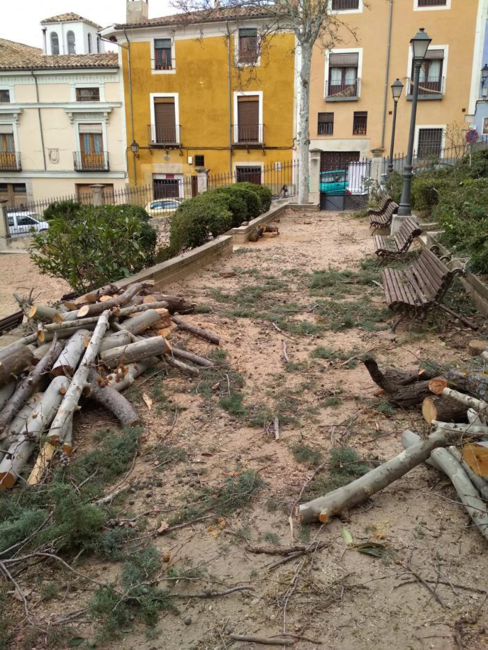 Ciudadanos lamenta la tala de árboles y la inactividad del Consejo de Medio Ambiente durante la legislatura