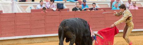 Un gran Castella desoreja un toro de José Vázquez de vuelta al ruedo en Cuenca