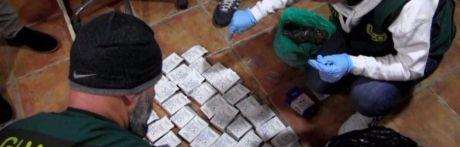 Desmantelan una red de tráfico de anabolizantes ramificada en media España