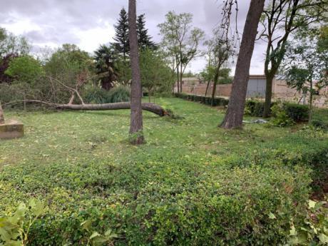 Escudero conoce los efectos de la fuerte tormenta en Santa María del Campo Rus y traslada el apoyo de las instituciones