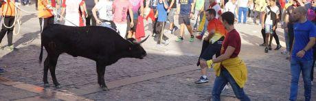 Video   Ambiente y vaquilla del tercer día