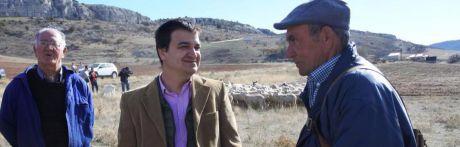 Castilla-La Mancha anuncia un millón de euros de ayuda a los ganaderos de extensivo a través de la línea de la 'oveja bombera'