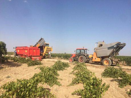 Telefónica impulsará la digitalización del sector agrícola con el proyecto Visual Green