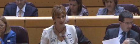 El PSOE pregunta a mariscal cuándo viajará a Teruel a reclamar la Autovía