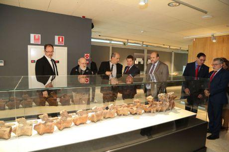 El Museo de Paleontología acogerá un Centro de Investigación sobre Paleontología