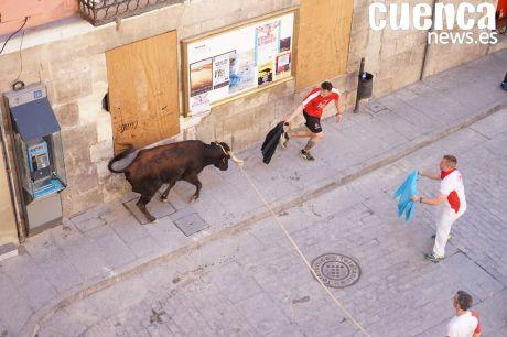 VIDEO | Exhibición taurina de vacas enmaromadas del Congreso del Toro de Cuerda