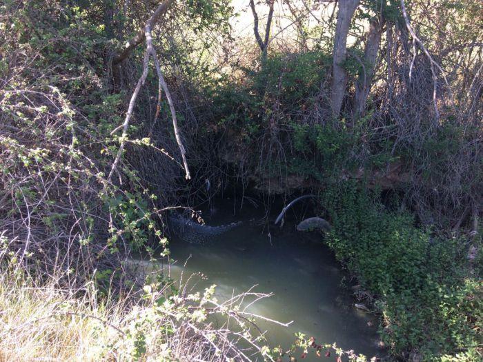 Ciudadanos insiste en su petición para que se depuren las aguas residuales de las pedanías