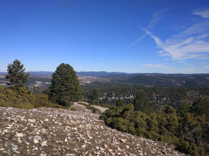 Piden un plan de reforestación para la Serranía de Cuenca afectada por los incendios