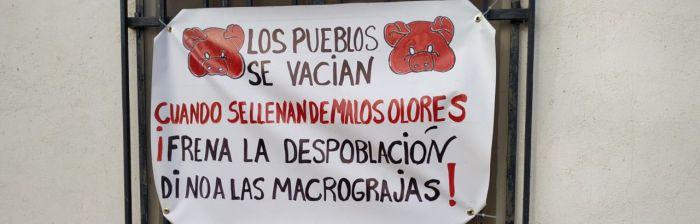 Los pueblos de la Villa Romana de Noheda se llenan con pancartas para frenar la macrogranja proyectada