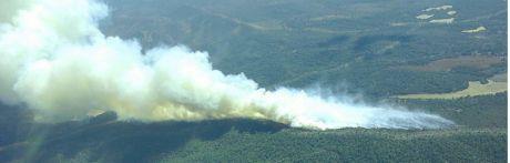 Suben a 100 las hectáreas afectadas por el incendio de Monteagudo de las Salinas