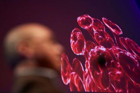 Castilla-La Mancha registra 2.780 casos de coronavirus y 263 fallecidos