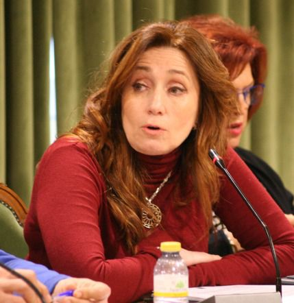 Ciudadanos reclama unos presupuestos para hacer frente a las consecuencias de la crisis sanitaria por la COVID19