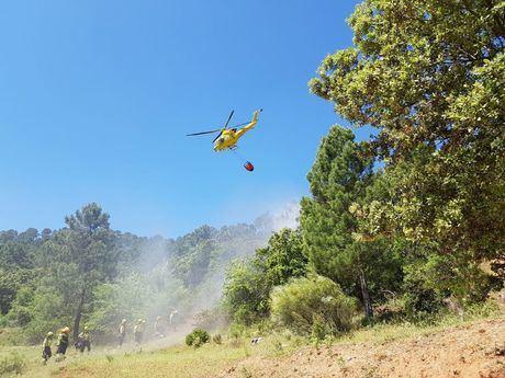 Riesgo alto de incendios forestales en la provincia