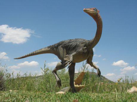 Figura de Pelecanimimus polyodon de Las Hoyas - Museo Paleontológico de Castilla-La Mancha