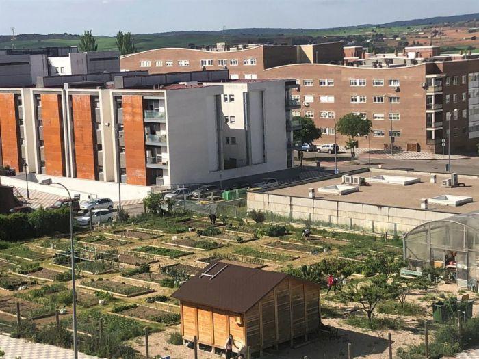 Huertos Sociales en el barrio de Villa Román