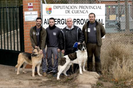 Tres nuevas adopciones en el Albergue Provincial de Animales en la recta final del año 2017
