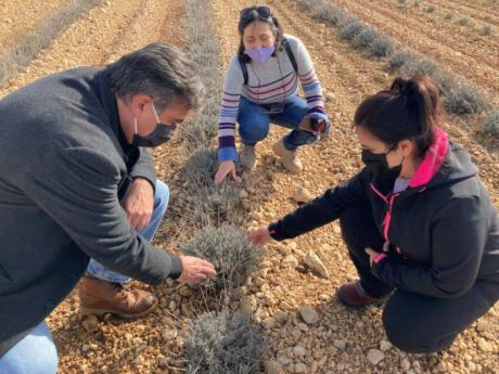 La Junta destaca el potencial de la provincia en la creación de proyectos innovadores dentro del sector agroalimentario