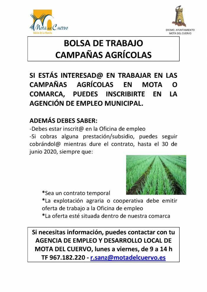 Mota del Cuervo y comarca buscan mano de obra para trabajar en el campo