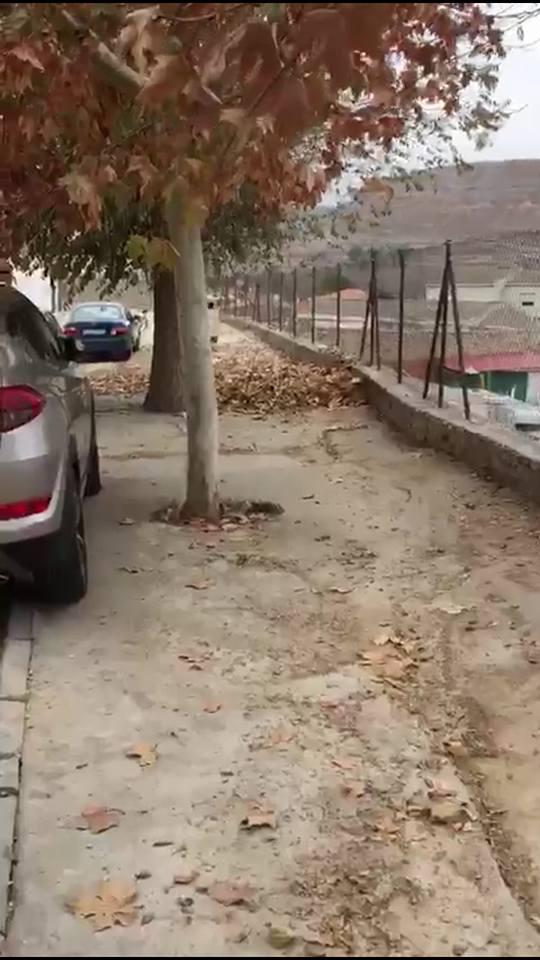 """El PP denuncia el estado """"deplorable"""" de varias calles de Barajas de Melo"""