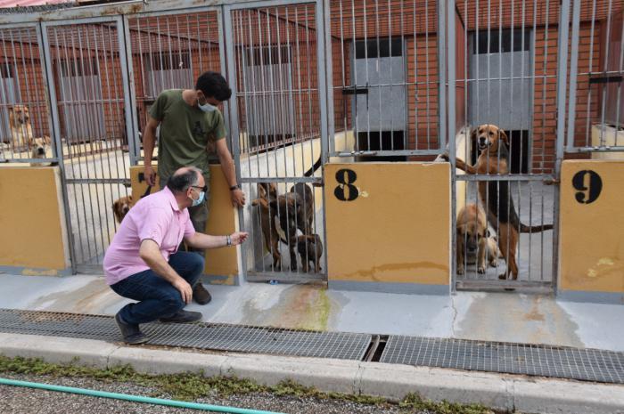 El Albergue Provincial de Animales consigue que en el último año un centenar de perros encuentren una familia