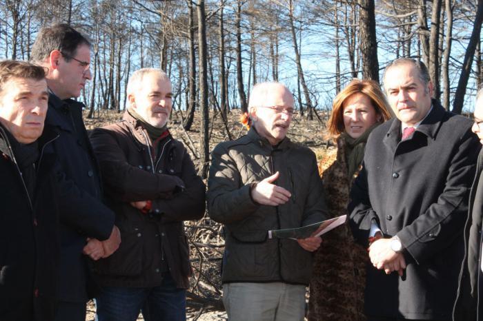 Gregorio visita las obras de restauración en la zona del incendio forestal de Campillo de Altobuey