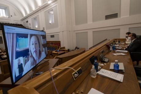 La Proposición de Ley de reserva de material sanitario avanza en un Pleno con votos y comparecencia telemáticos