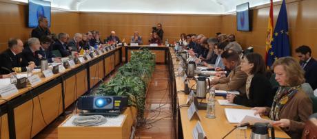 Castilla-La Mancha asiste al Consejo Nacional de Protección Civil