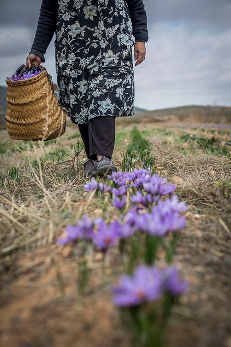 Luchar contra el despoblamiento con la fotografía. Foto Rural 19