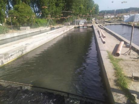 Se destinan más de 200.000 euros para el fomento de la acuicultura
