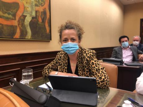 """Canales pide el apoyo a los presupuestos para """"salir adelante con energía"""" e invita al resto de partidos a votarlos con convicción"""