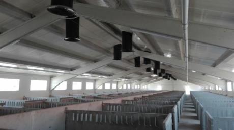 La Confederación de Empresarios pide que se permita operar a las granjas de porcino que cumplan los requisitos
