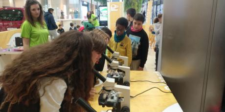 Pequeños científicos regresa a El Mirador con talleres infantiles de ciencia los viernes y sábados de noviembre