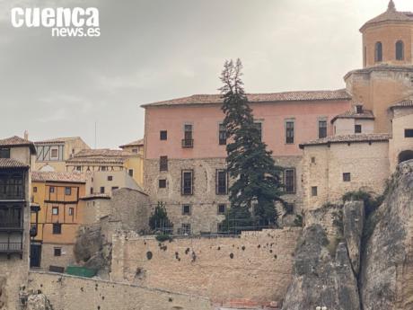 El Obispado corta los dos árboles del patio trasero de la Catedral