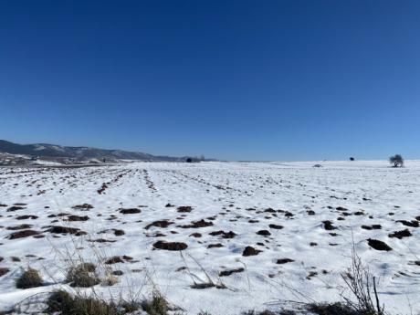 Suspendidas para mañana todas las rutas escolares de la provincia debido a la nieve acumulada y las heladas previstas para las próximas horas