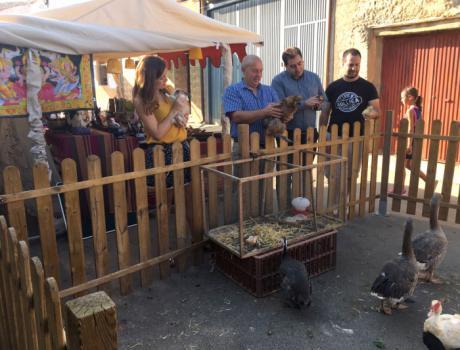 Inaugurado el II Mercado Medieval de Bólliga en plenas fiestas patronales de San Roque