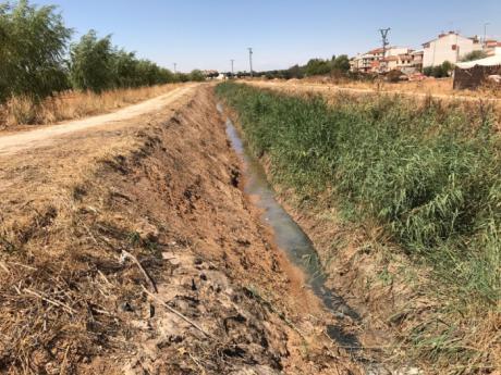 El Ayuntamiento de Quintanar del Rey agradece a la CHJ que acometa las mejoras en el cauce del Valdemembra