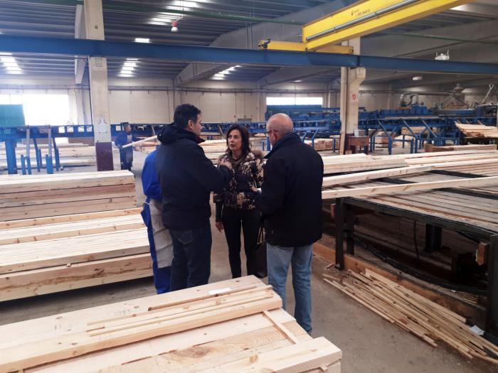 """Luz Moya: """"Quiero que Cuenca se convierta en escaparate de la Fábrica de Maderas para promocionar su mobiliario urbano"""""""