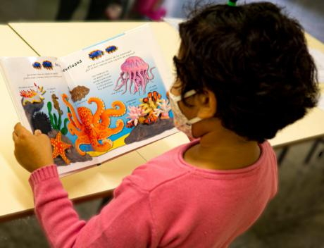 Cruz Roja Juventud pone en marcha el servicio infantil de animación a la lectura coincidiendo con el Día de la Biblioteca.