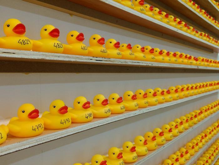 Patos de goma surcarán el río Júcar para concienciar sobre el autismo