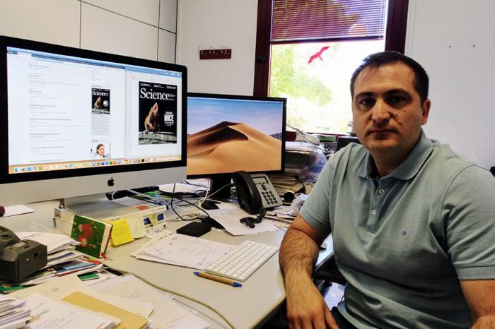 Investigadores europeos, coordinados por el IREC, piden medidas con base científica que atajen la peste porcina africana