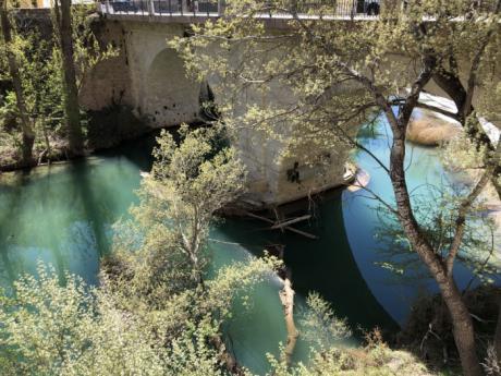 Este miércoles se retiran los chopos caídos bajo el Puente de San Antón