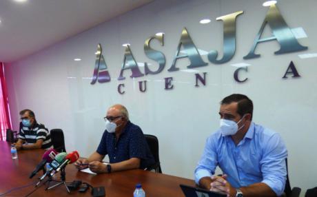 """Gallardo responsabiliza a la industria de """"fabricar"""" los precios de girasol y anuncia movilizaciones en defensa de este cultivo"""