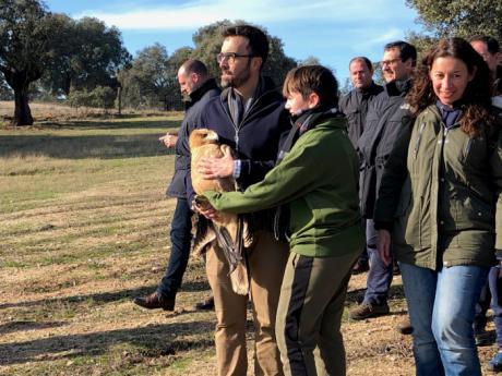 Castilla-La Mancha prevé la actualización y renovación de los planes de recuperación de las especies más emblemáticas de la región