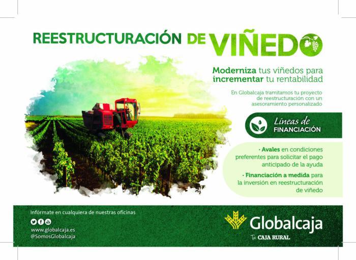 Globalcaja da respuesta y muestra su compromiso con el sector agrario en las ayudas a la reestructuración y reconversión de viñedo 2019