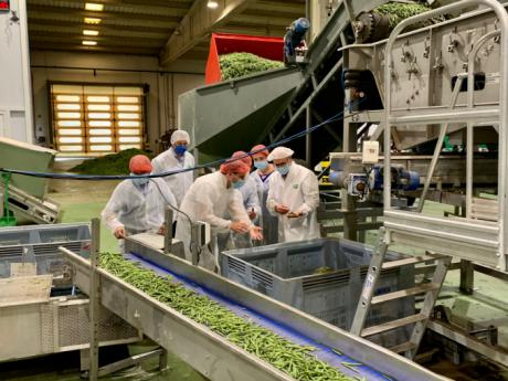 La Diputación colabora con el The Real Green Food para instalar modelos de producción de legumbres en la provincia
