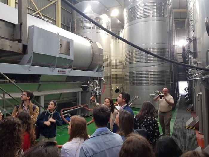 Un curso de verano enseña a disfrutar del vino a través de catas online