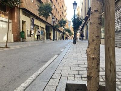 Albacete lleva a cabo un plan para reponer 737 árboles en las calles de la ciudad