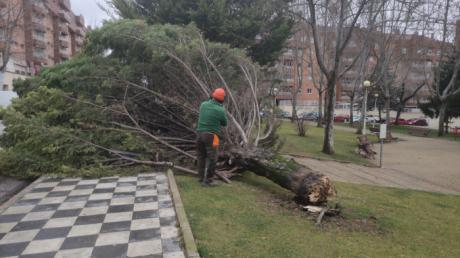 Se atienden más de una veintena de incidencias por el fuerte viento